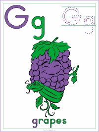 Alphabet Letter G Grapes Preschool Lesson Plan Printable Activities and Worksheets