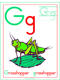 Alphabet Letter G Grasshopper Preschool Lesson Plan Printable Activities and Worksheets