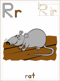 Alphabet Letter R Rat Preschool Lesson Plan Printable Activities and Worksheets