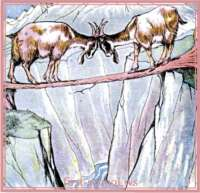 aesop's fable the two goats