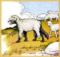 the wolf in sheep's clothing fable of biblical origin matthew 7:15