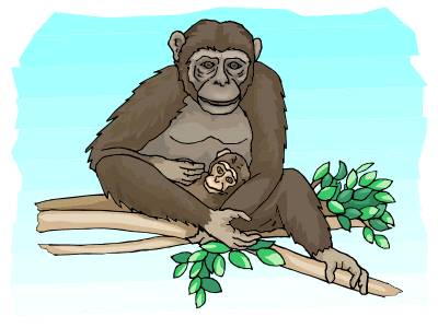 Chimpanzee Theme Preschool Lesson Plan Printable Activities and Crafts